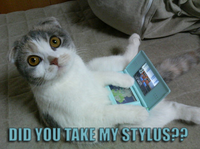Did you take my stylus?